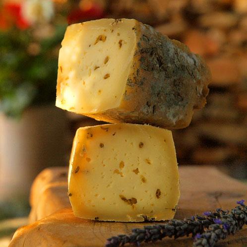 זרעי שומר מצרי - גבינה מחלב עיזים אורגני מחוות חלב עם הרוח – יודפת בגליל